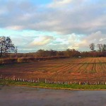 Mollett's Farm webcam view in Autumn