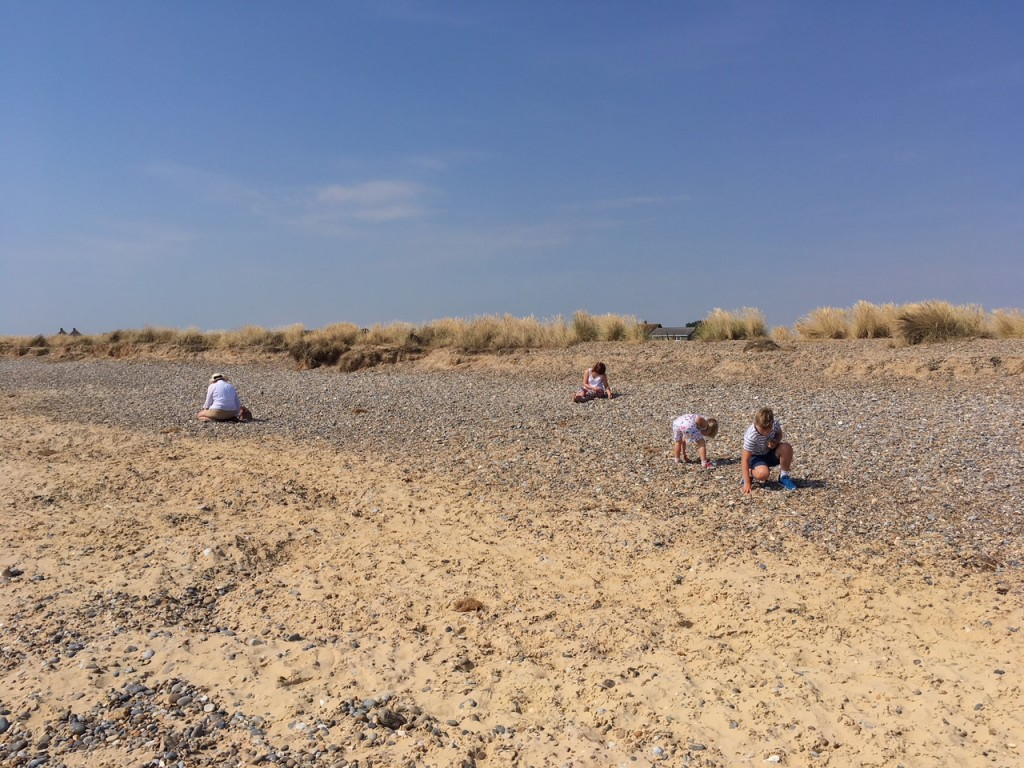 wide shot of kids beachcombing on a sandy beach