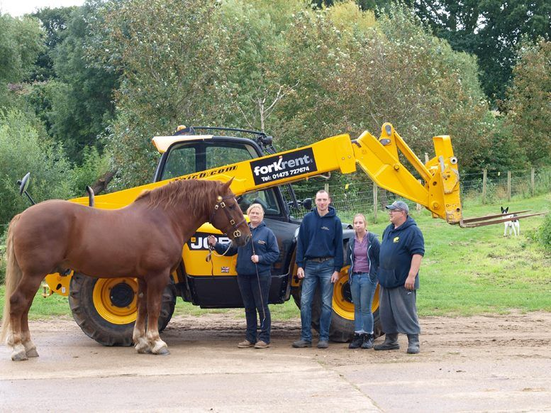 A large Suffolk Punch horse next to a JCB