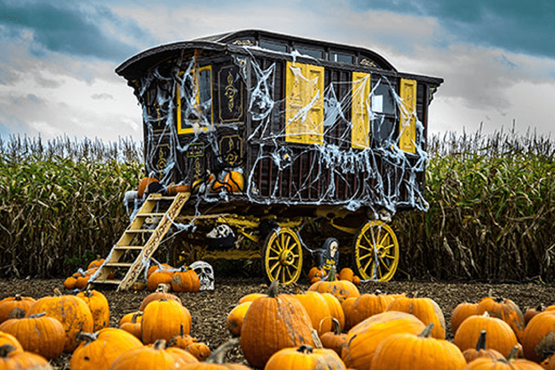 Spiderweb covered cart surrounded by pumpkins