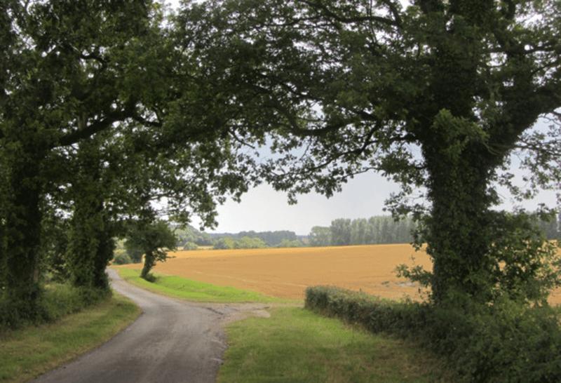 Framlingham Walk