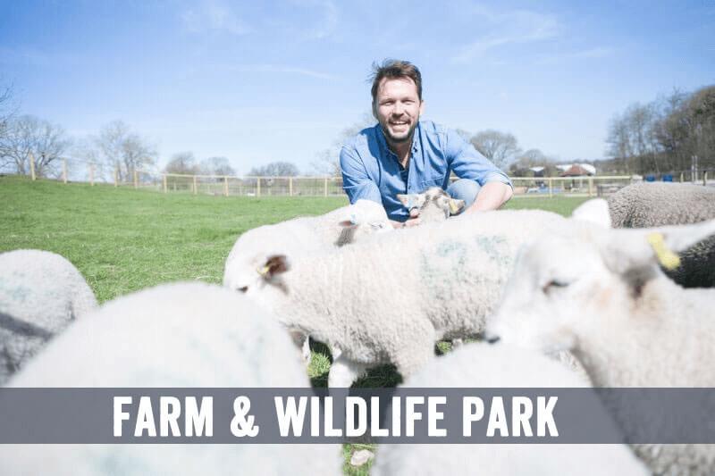 Jimmys Farm and Wildlife Park