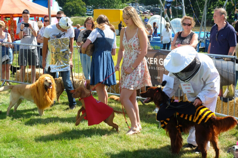 Fancy Dress for Suffolk Dog Day