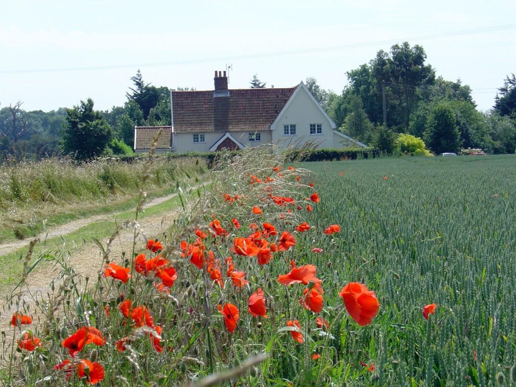 molletts farm - driveway - fields