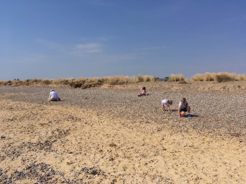 wide shot of kids beachcombing on a sandy beach
